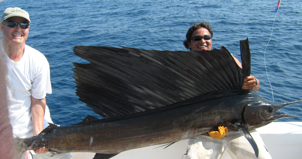 Lots of billfish fishing report from sunny and warm costa for Noreast fishing reports