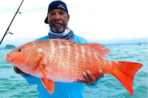 Pacific Red Snapper Quepos