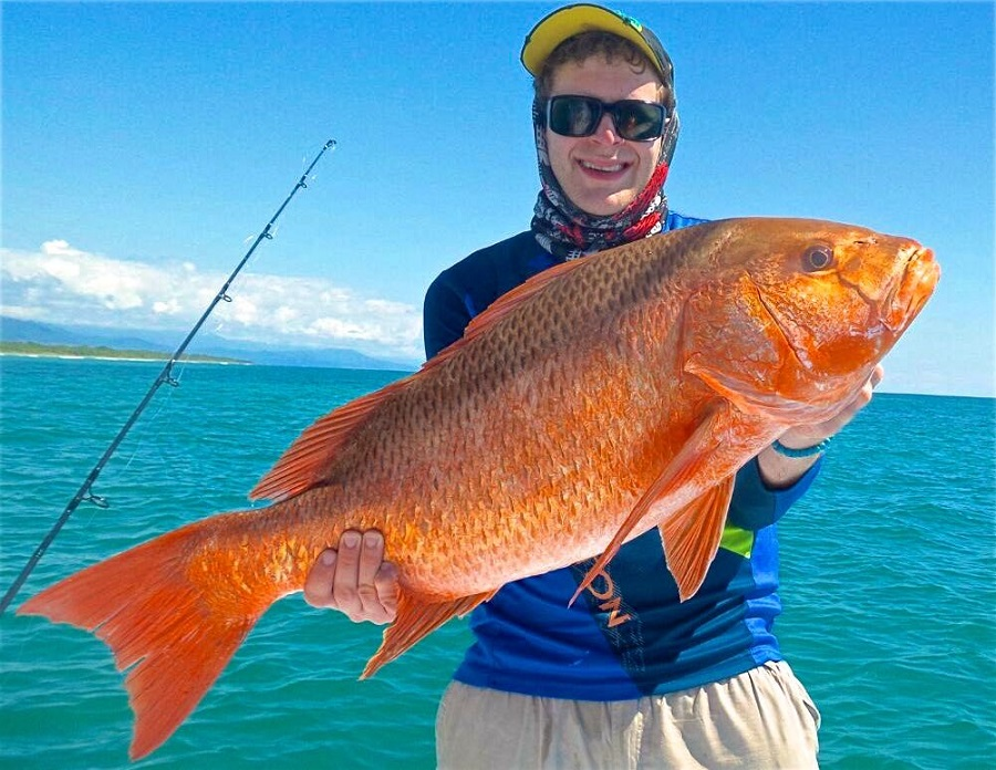 Quepos Fishing Snapper