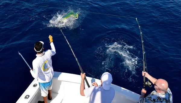 Quepos fishing reports history american owner captain for Quepos fish adventure