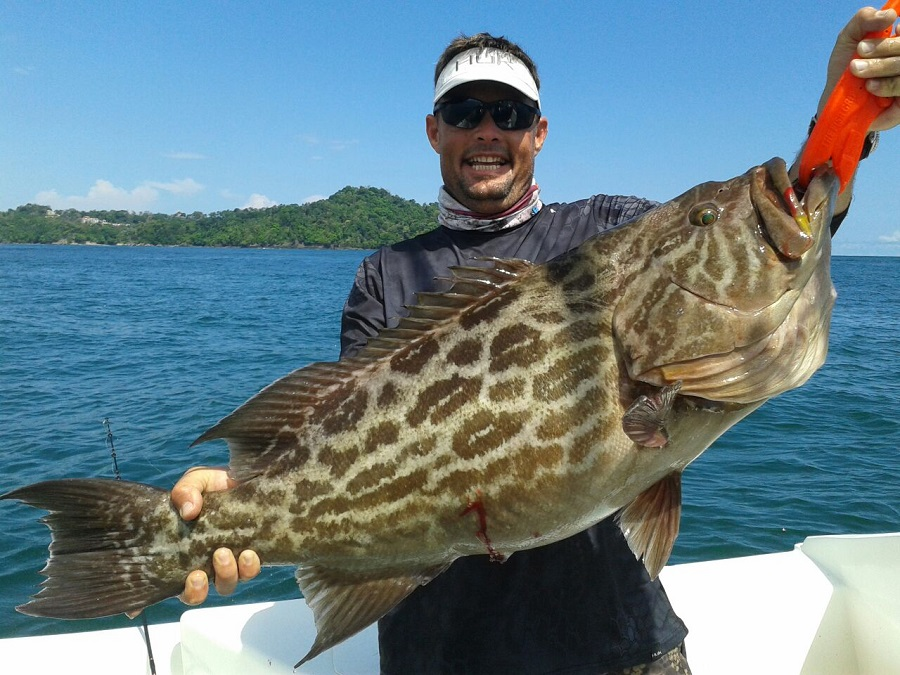 Quepos costa rica grouper snook and roosterfish pictures for Fishing in costa rica
