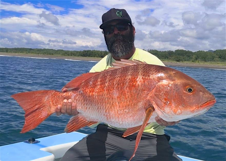 Quepos Red Snapper inshore charter