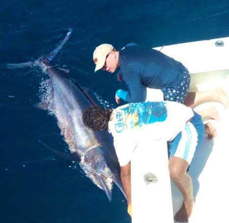 Quepos Marlin Fishing Costa Rica Charter Captain