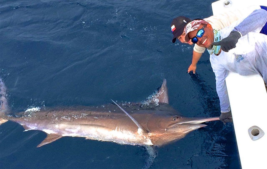 Blue Marlin Quepos Costa Rica Fishing Charter