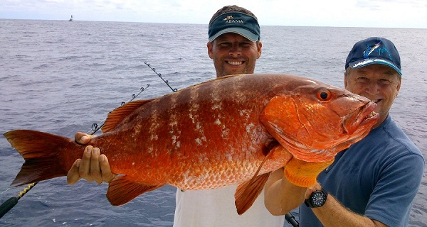 Quepos Snapper Fishing Report 2014