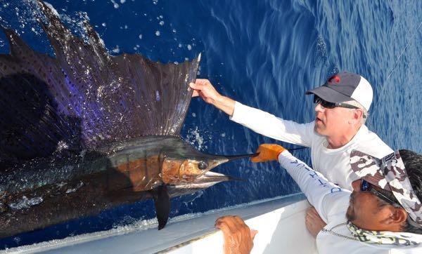 Costa Rica Charter Sailfish