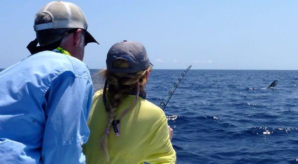 Sailfish in Quepos Fishing