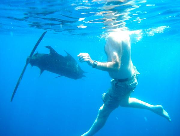 Quepos Fishing Underwater Sailfish